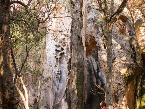 Menorca's mindblowing biosphere