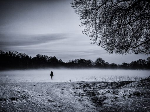 Winterlight series: Solitude